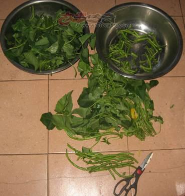 空心菜炒出两种家常菜美味—爆炒空心菜杆和清烧空心菜叶子